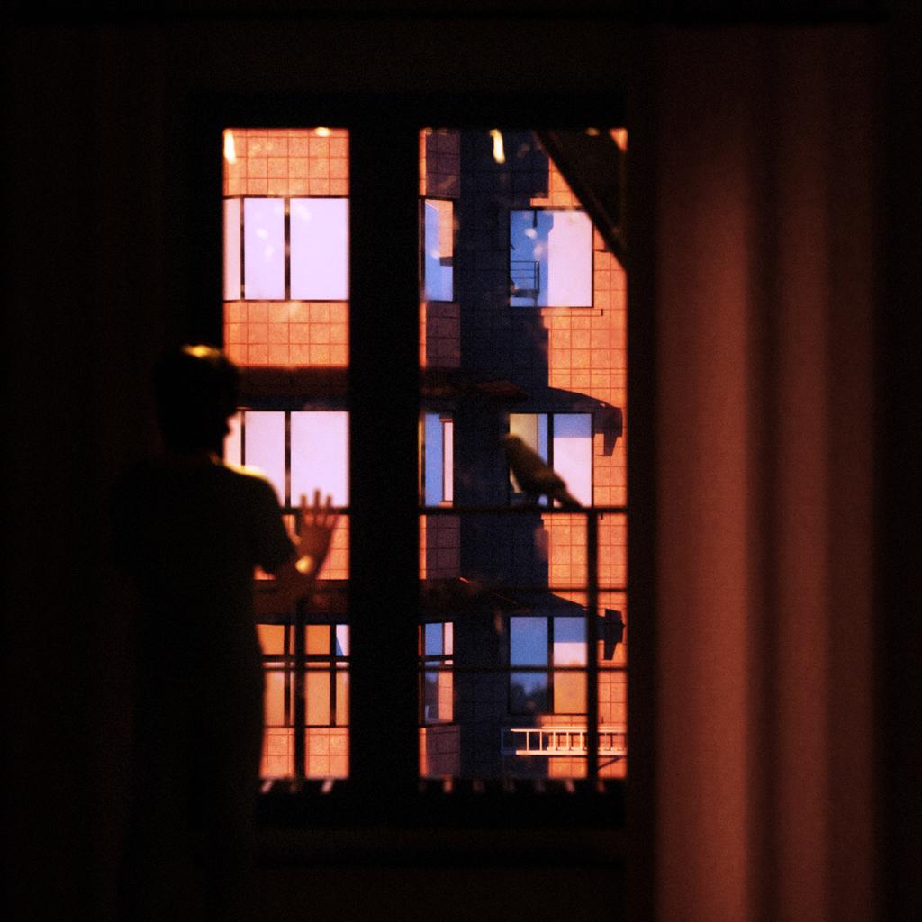 Sunset_Window_01-1